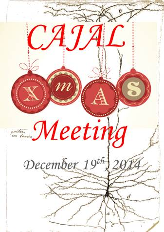 Programa CajalXmas Meeting 2014